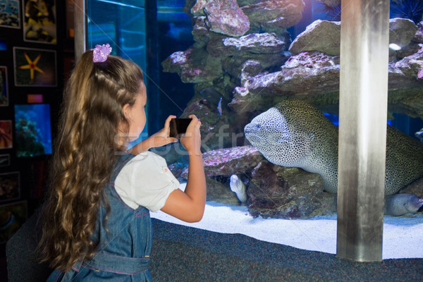 Petite fille regarder poissons réservoir aquarium enfant Photo stock © wavebreak_media
