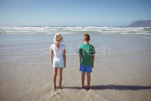 Hátsó nézet testvérek áll tengerpart part napos idő Stock fotó © wavebreak_media