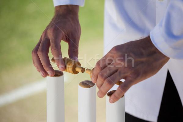 Referee putting bails on cricket stumps Stock photo © wavebreak_media