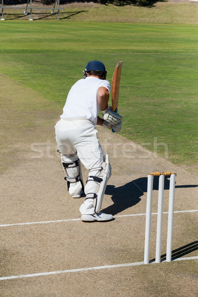 Hátsó nézet krikett játékos gyakorol mező napos idő Stock fotó © wavebreak_media