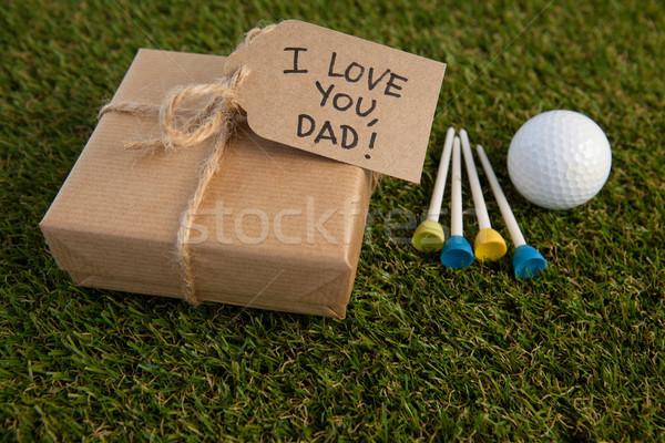 Gün hediye kutusu metin golf topu alan Stok fotoğraf © wavebreak_media