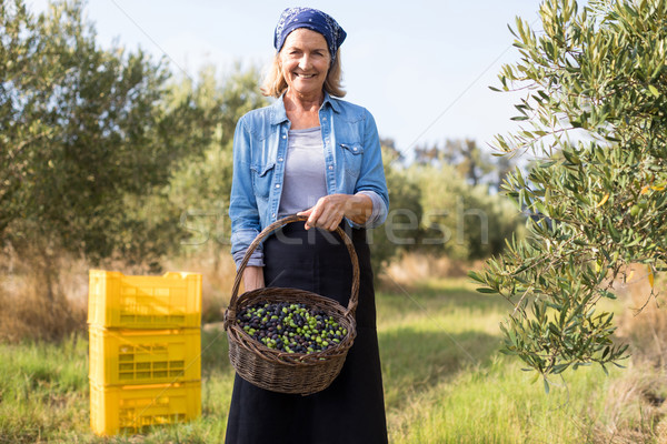 Portrait of happy of woman holding harvested olives in basket Stock photo © wavebreak_media
