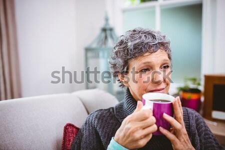 Kadın limon çay oturma odası ev Stok fotoğraf © wavebreak_media