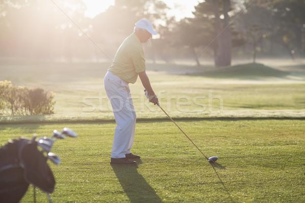 Stockfoto: Zijaanzicht · man · spelen · golf · permanente · veld