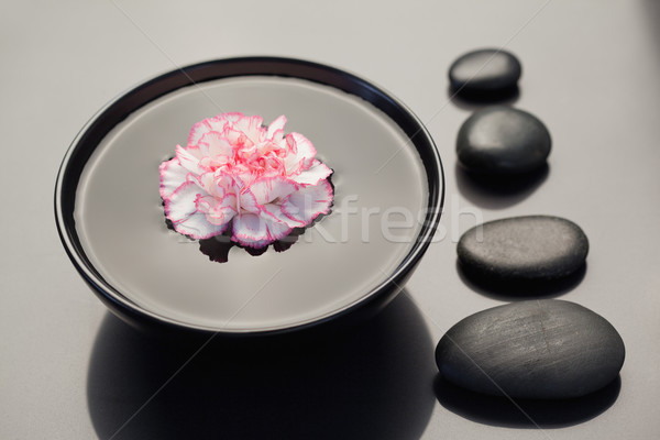 Pink and white carnation floating in a black bowl with aligned black stones on its side Stock photo © wavebreak_media