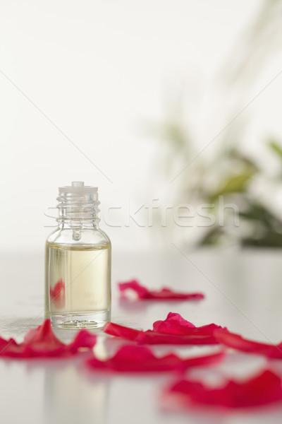 Stock fotó: üveg · fiola · rózsaszín · szirmok · kamera · fókusz
