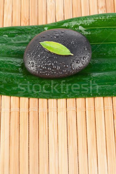 Close up of a small leaf on a black stone on a bigger leaf Stock photo © wavebreak_media