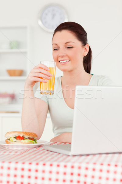 Good looking woman relaxing on her laptop and posing while drinking a glass of orange juice in her k Stock photo © wavebreak_media