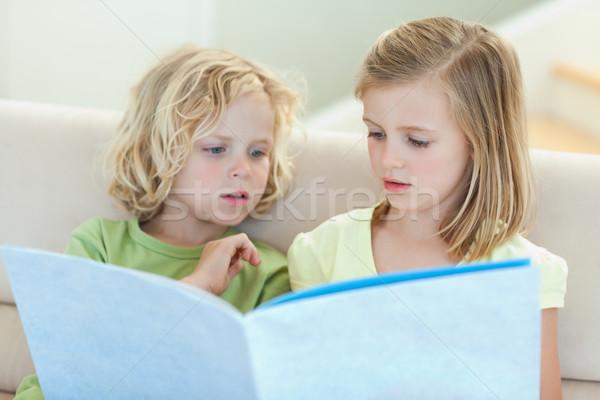 Fratelli lettura magazine insieme divano sorriso Foto d'archivio © wavebreak_media