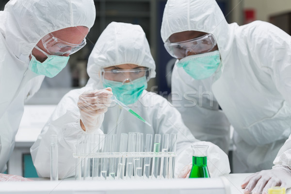 Chemist adding green liquid to test tubes with two other chemists watching in the lab Stock photo © wavebreak_media