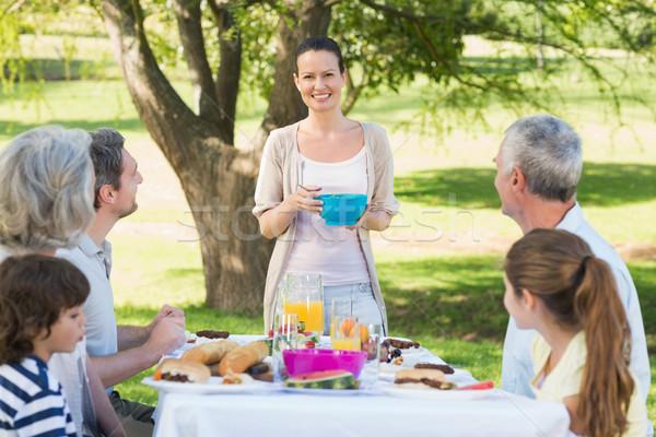 Família grande almoço gramado vista lateral mulher família Foto stock © wavebreak_media