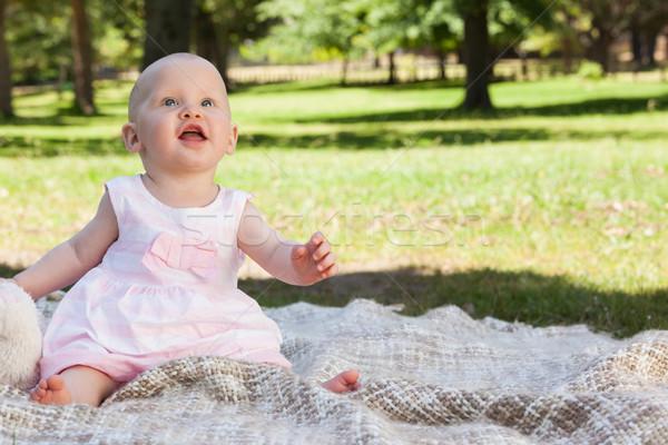 Cute bébé séance couverture parc Photo stock © wavebreak_media
