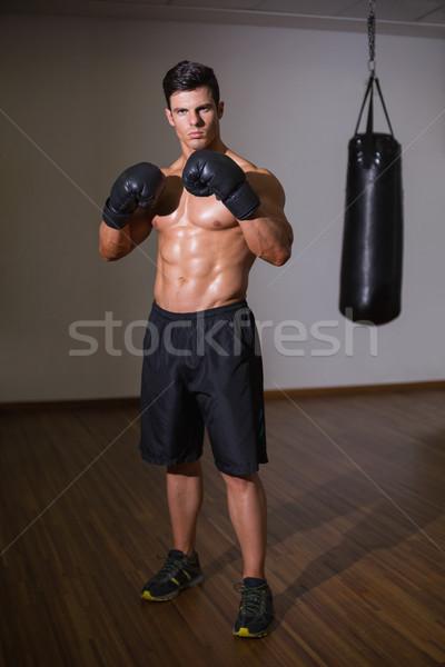 Retrato sin camisa muscular boxeador pie salud Foto stock © wavebreak_media