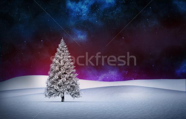 Fenyőfa tájkép digitálisan generált erdő jég Stock fotó © wavebreak_media