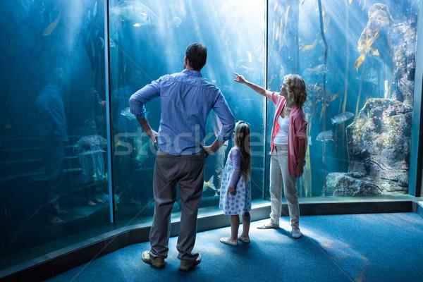 Naar vis tank gelukkig gezin aquarium meisje Stockfoto © wavebreak_media