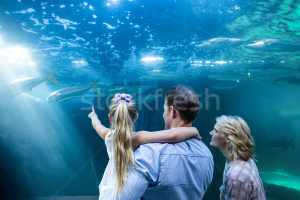 Familly looking at fish tank Stock photo © wavebreak_media
