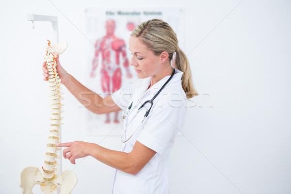 Medico anatomica colonna vertebrale clinica donna Foto d'archivio © wavebreak_media
