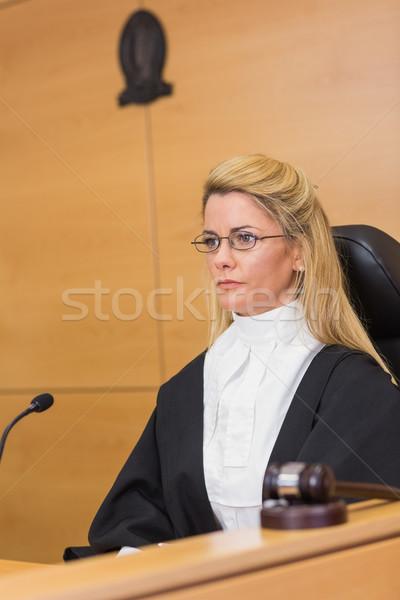 корма судья сидят прослушивании суд комнату Сток-фото © wavebreak_media