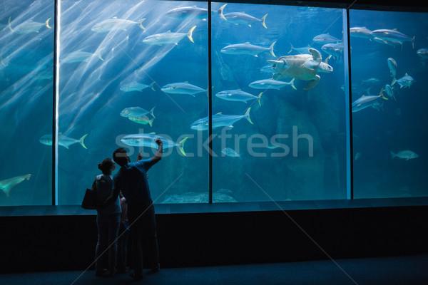 счастливая семья глядя рыбы цистерна аквариум любви Сток-фото © wavebreak_media