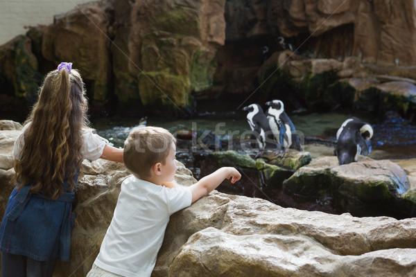 Weinig broers en zussen naar kind rock leuk Stockfoto © wavebreak_media