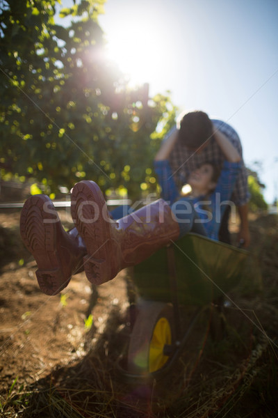 Young man pushing his girlfriend in wheelbarrow at vineyard Stock photo © wavebreak_media
