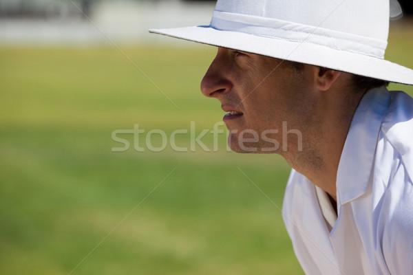 Zijaanzicht gericht scheidsrechter veld cricket wedstrijd Stockfoto © wavebreak_media