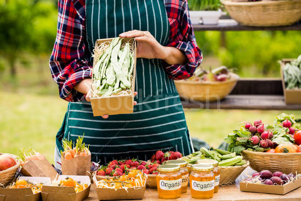 Midsection of young woman selling organic vegetables Stock photo © wavebreak_media