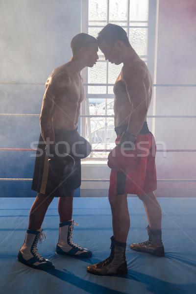 Boxoló áll szemtől szembe box gyűrű fitnessz Stock fotó © wavebreak_media