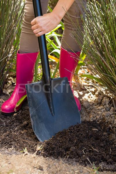 низкий женщину почвы лопатой саду Сток-фото © wavebreak_media