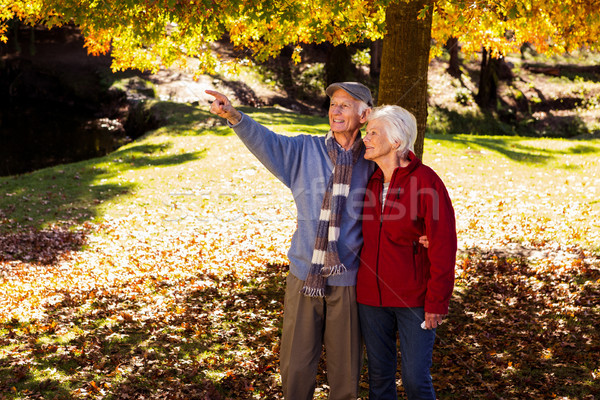 Altos hombre algo esposa parque Foto stock © wavebreak_media