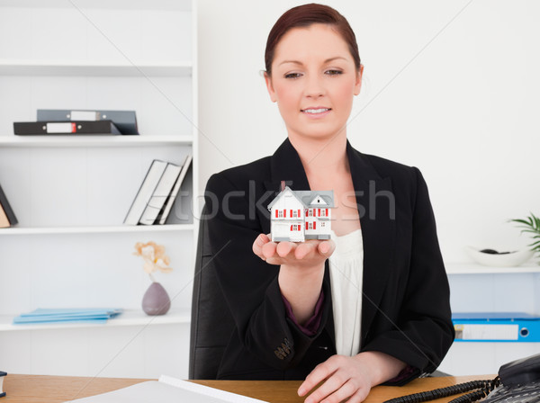 Fiatal jól kinéző női öltöny tart miniatűr Stock fotó © wavebreak_media