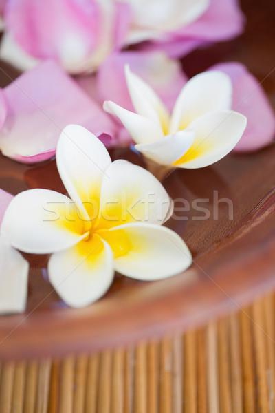 Fiori ciotola fiore spa Foto d'archivio © wavebreak_media