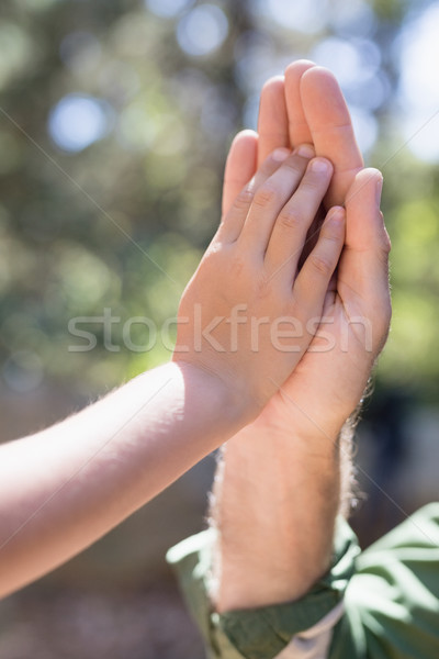 Cropped hands of father and son giving high five in forest Stock photo © wavebreak_media