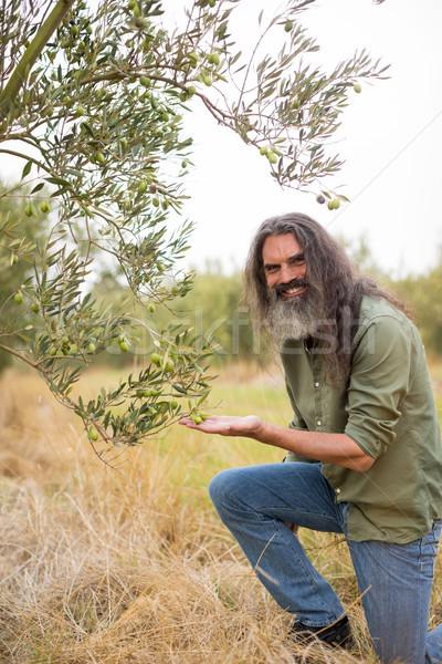 Portrait of happy farmer observing examining olive Stock photo © wavebreak_media