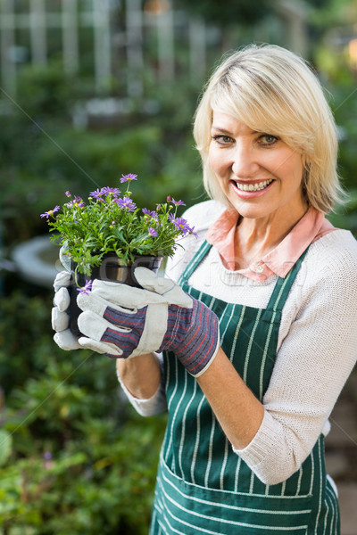 Happy mature female gardener holding potted flowers  Stock photo © wavebreak_media
