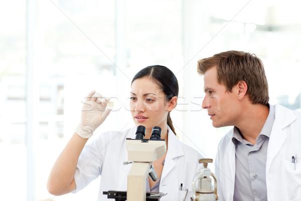 Naukowcy patrząc slajdów mikroskopem młodych kobieta Zdjęcia stock © wavebreak_media