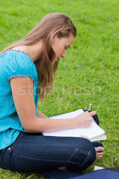 Young girl writing on her notebook while sitting down on the grass in the countryside Stock photo © wavebreak_media