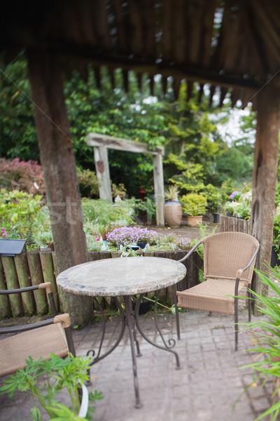 Zöld kert kerti bútor fa levelek növény Stock fotó © wavebreak_media
