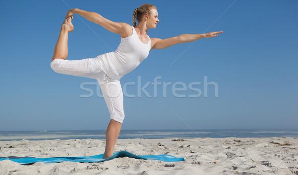 Szőke nő áll harcos póz tengerpart napos idő Stock fotó © wavebreak_media
