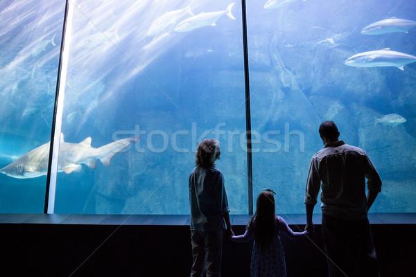 Happy family looking at the fish tank Stock photo © wavebreak_media
