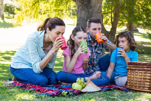 счастливая семья пикника парка женщину девушки Сток-фото © wavebreak_media