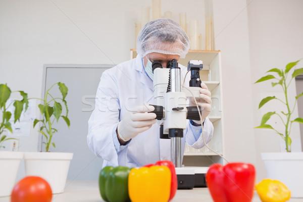 Food scientist looking through a microscope Stock photo © wavebreak_media