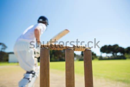 Cropped image of wicketkeeper catching ball behind stumps Stock photo © wavebreak_media