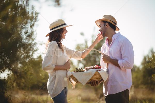 счастливым дружок фермы Постоянный Сток-фото © wavebreak_media