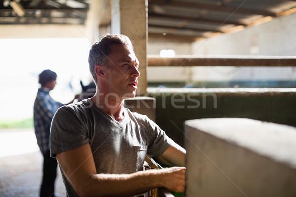 Man working in the stable Stock photo © wavebreak_media
