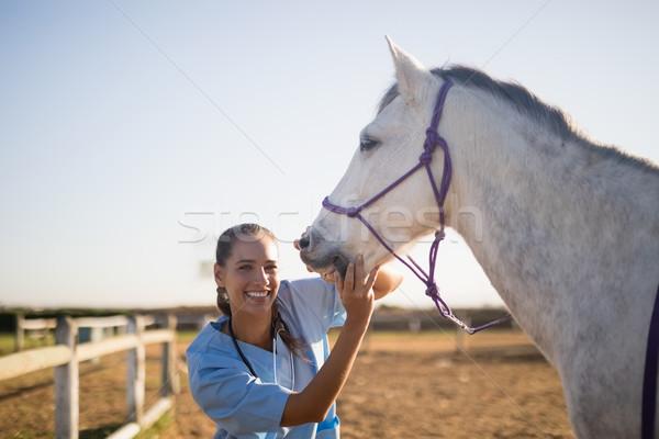 Smiling female vet eaxmining horse at barn Stock photo © wavebreak_media