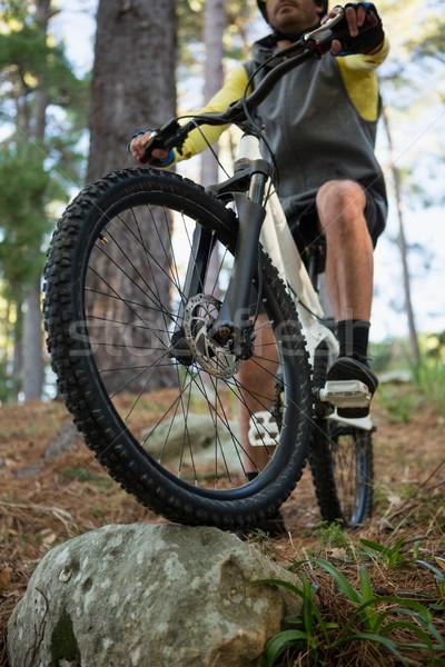 Férfi hegy motoros lovaglás bicikli erdő Stock fotó © wavebreak_media