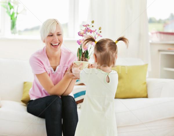 Smiling woman get surprise by her daughter in living room Stock photo © wavebreak_media