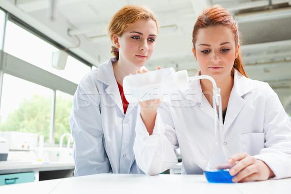 Tudósok kísérlet laboratórium nő munka diák Stock fotó © wavebreak_media