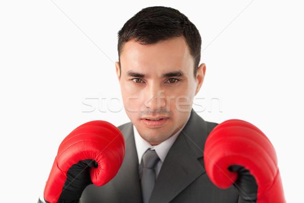 Biznesmen rękawice bokserskie biały działalności Zdjęcia stock © wavebreak_media